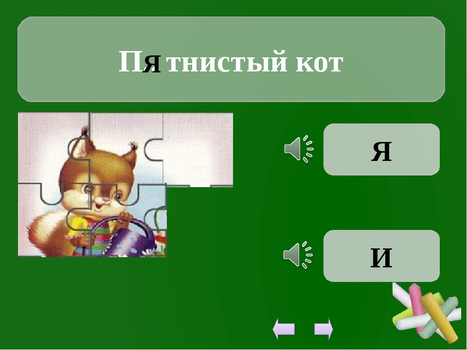 П.. тнистый кот Я Я И