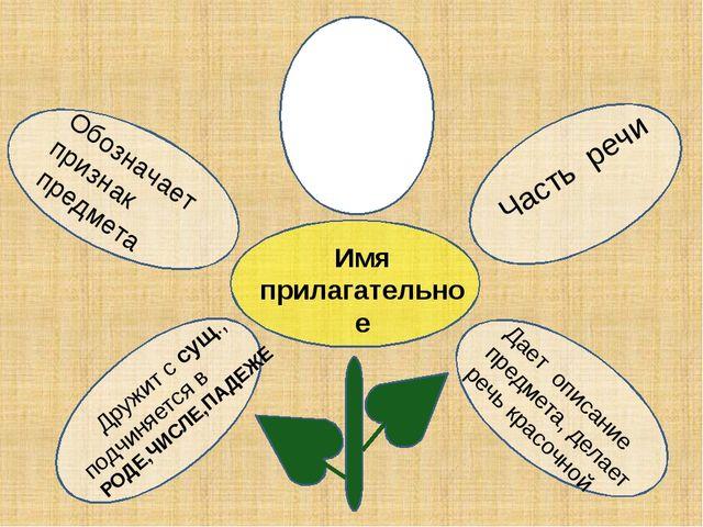 Дружит с сущ., подчиняется в РОДЕ,ЧИСЛЕ,ПАДЕЖЕ Имя прилагательное Часть речи...
