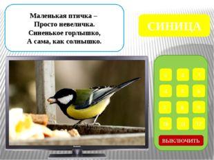 1 2 3 4 5 6 7 8 9 ВЫКЛЮЧИТЬ 12 11 10 Что за птица, Мороза не боится? Хоть сн