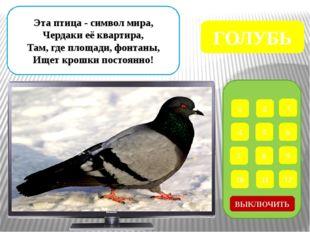 Интернет – ресурсы Дети у кормушки - http://cdn-nus-1.pinme.ru/tumb/600/photo