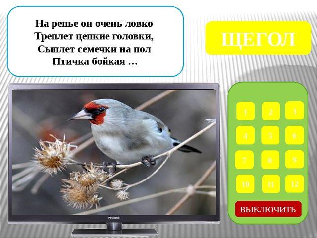 1 2 3 4 5 6 7 8 9 ВЫКЛЮЧИТЬ 12 11 10 Маленькая птичка – Просто невеличка. С...