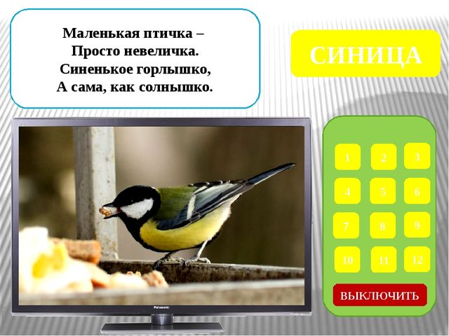 1 2 3 4 5 6 7 8 9 ВЫКЛЮЧИТЬ 12 11 10 Что за птица, Мороза не боится? Хоть сн...