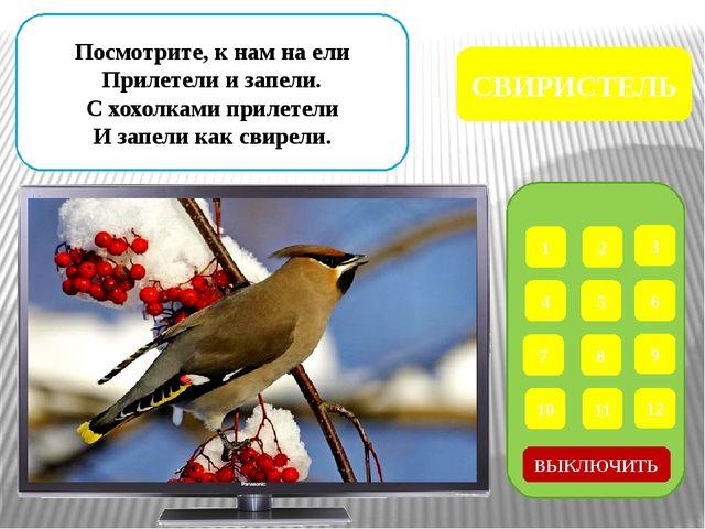 1 2 3 4 5 6 7 8 9 12 11 10 Корку хлебную таскает, Птиц других не подпускает....