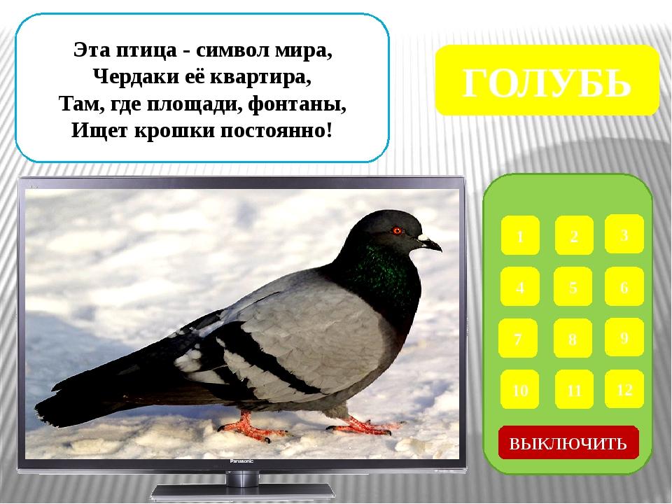 Интернет – ресурсы Дети у кормушки - http://cdn-nus-1.pinme.ru/tumb/600/photo...