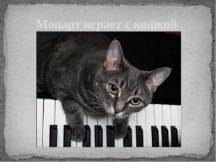 Моцарт играет с кошкой