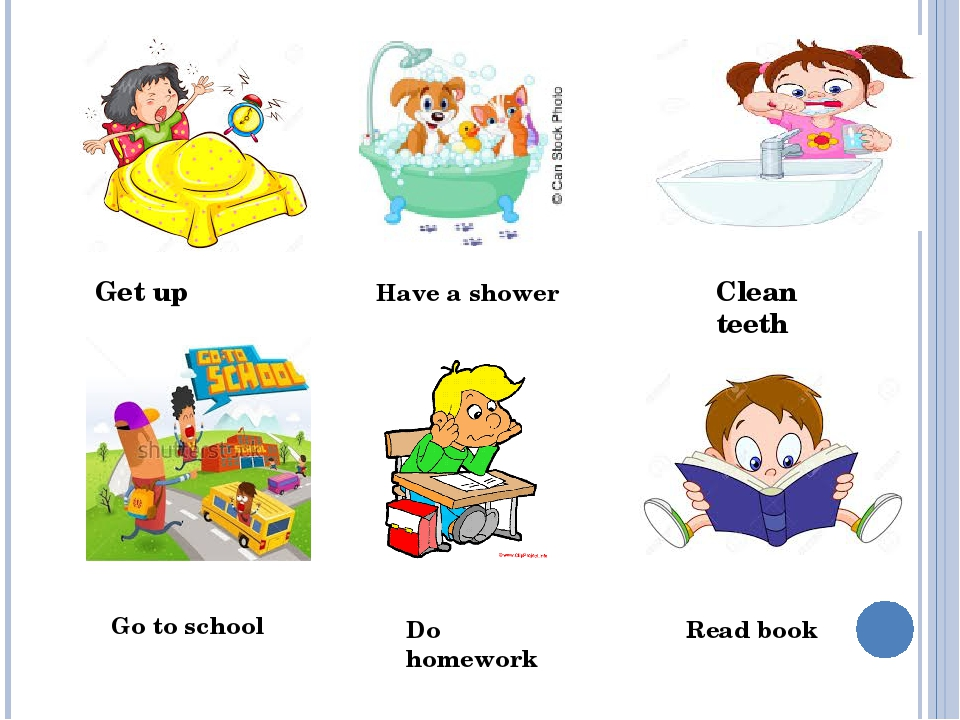 Get up Clean teeth Go to school Do homework Read book Have a shower
