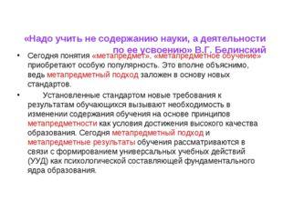 «Надо учить не содержанию науки, а деятельности по ее усвоению» В.Г. Белинск