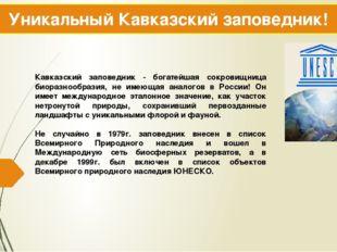 Уникальный Кавказский заповедник! Кавказский заповедник - богатейшая сокровищ