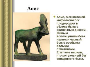 Апис Апис, в египетской мифологии бог плодородия в облике быка с солнечным ди