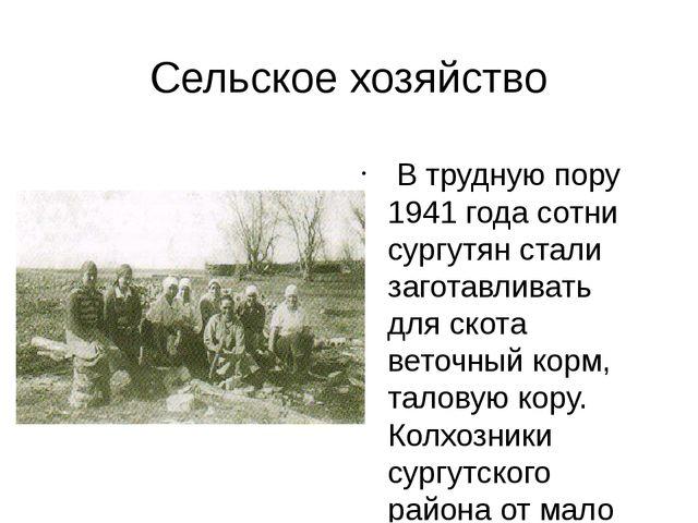 Сельское хозяйство В трудную пору 1941 года сотни сургутян стали заготавливат...