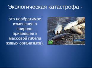 Экологическая катастрофа - это необратимое изменение в природе, приведшее к м
