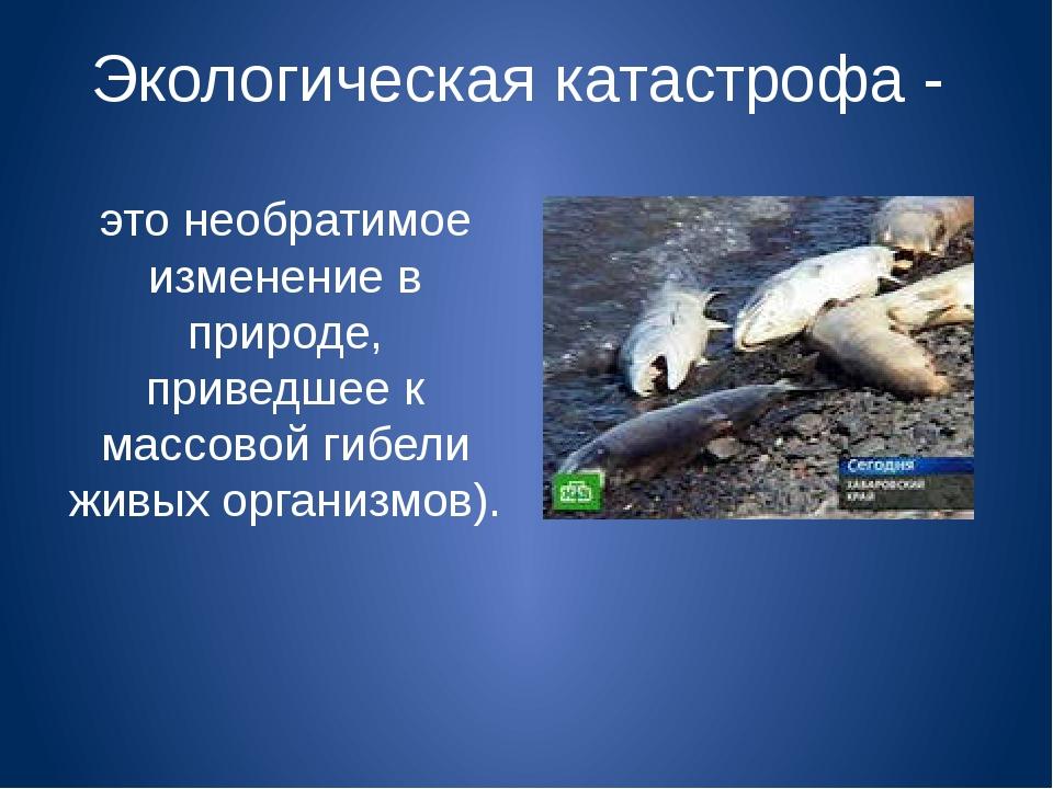 Экологическая катастрофа - это необратимое изменение в природе, приведшее к м...