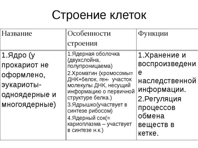 Строение клеток Название Особенности строения Функции 1.Ядро (у прокариот не...