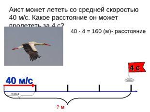 Аист может лететь со средней скоростью 40 м/с. Какое расстояние он может прол