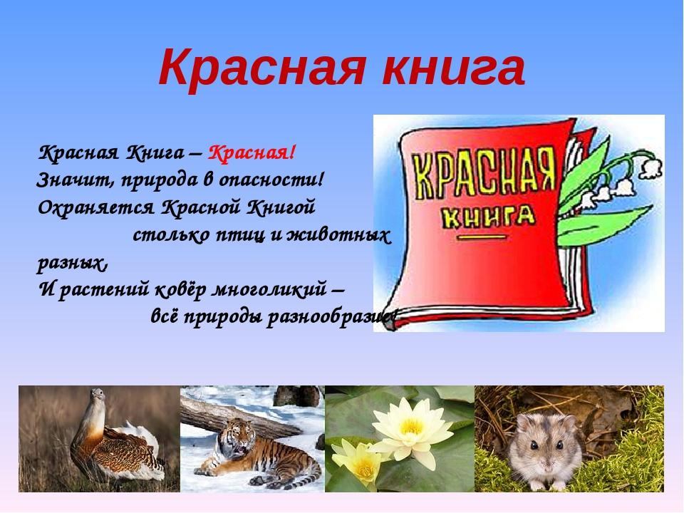 Красная книга Красная Книга – Красная! Значит, природа в опасности! Охраняет...