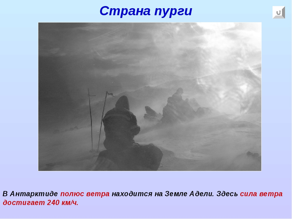 Страна пурги В Антарктиде полюс ветра находится на Земле Адели. Здесь сила ве...