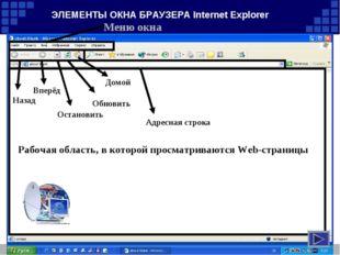 ЭЛЕМЕНТЫ ОКНА БРАУЗЕРА Internet Explorer Меню окна Назад Вперёд Домой Обновит
