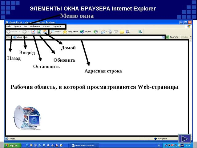 ЭЛЕМЕНТЫ ОКНА БРАУЗЕРА Internet Explorer Меню окна Назад Вперёд Домой Обновит...