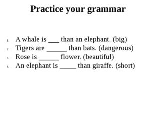Practice your grammar A whale is than an elephant. (big) Tigers are than bats
