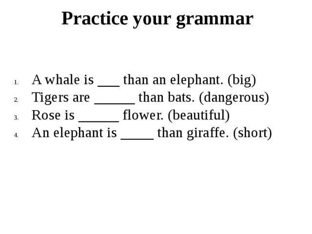 Practice your grammar A whale is than an elephant. (big) Tigers are than bats...