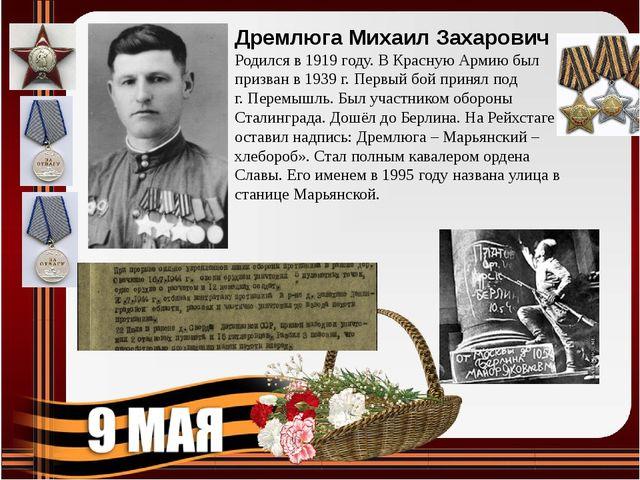 Дремлюга Михаил Захарович Родился в 1919 году. В Красную Армию был призван в...