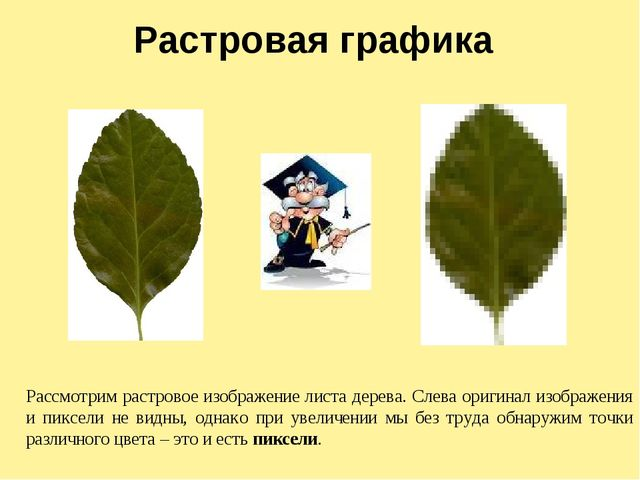 Растровая графика Рассмотрим растровое изображение листа дерева. Слева оригин...