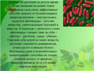 Зелёные же растения за долгое время существования на нашей Земле придумали св