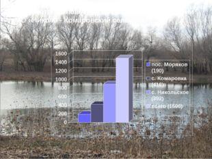 Количество человек, проживающих на территории МО «Николо - Комаровский сельсо