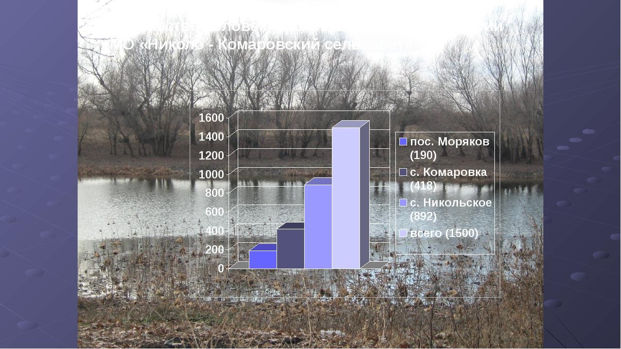 Количество человек, проживающих на территории МО «Николо - Комаровский сельсо...