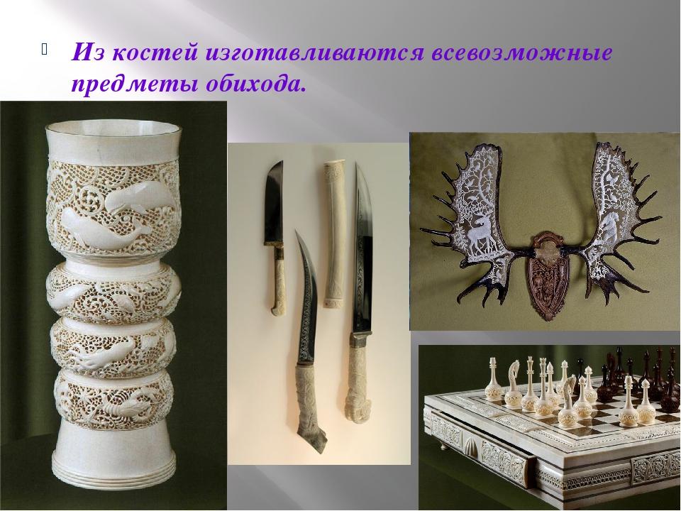 Из костей изготавливаются всевозможные предметы обихода.