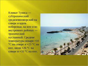 Климат Туниса — субтропический средиземноморский на севере и вдоль побережья,