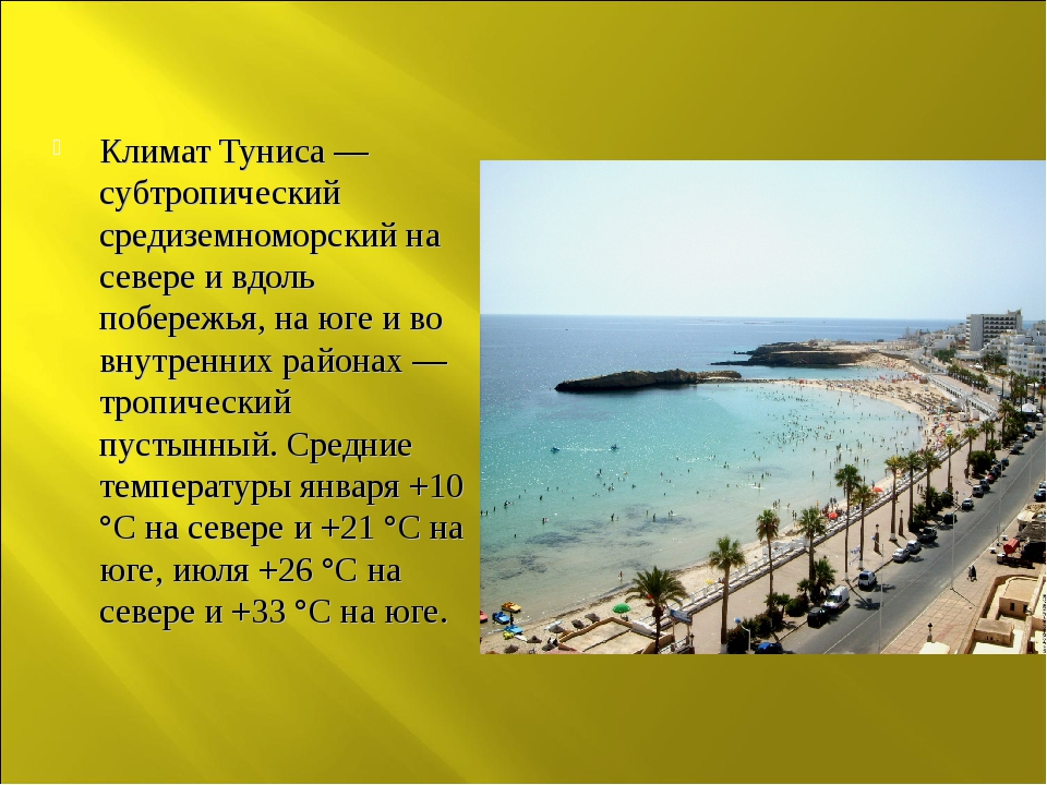 Климат Туниса — субтропический средиземноморский на севере и вдоль побережья,...