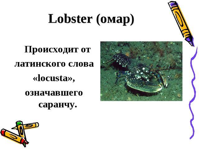 Lobster (омар) Происходит от латинского слова «locusta», означавшего саранчу.