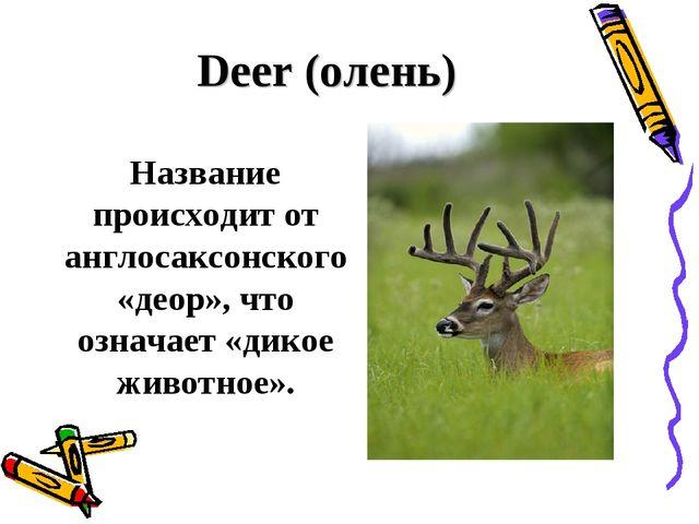 Deer (олень) Название происходит от англосаксонского «деор», что означает «д...