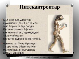 Питекантроптар Бұл көне адамдар түрі шамамен бұдан 1,2-1,6 млн жыл бұрын пайд