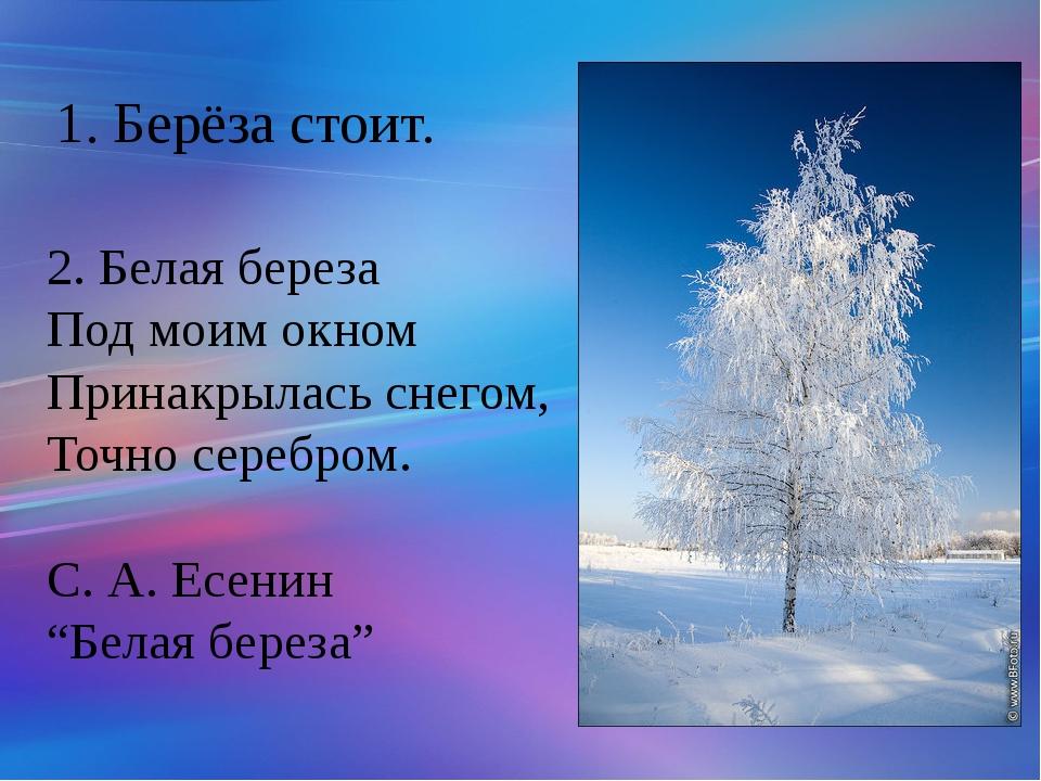 2. Белаябереза Подмоимокном Принакрыласьснегом, Точносеребром. С. А. Есе...
