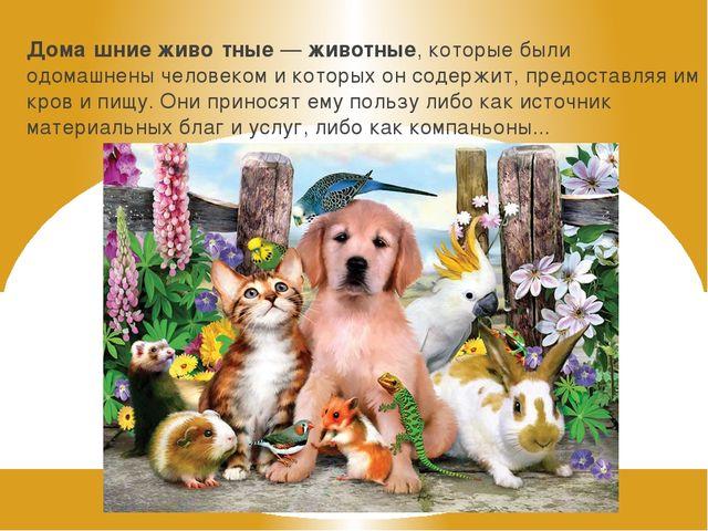 Дома́шниеживо́тные—животные, которые были одомашнены человеком и которых о...