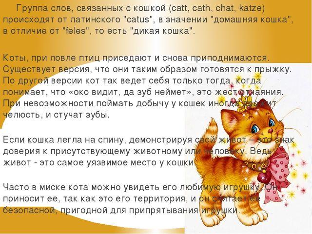 Группа слов, связанных с кошкой (catt, cath, chat, katze) происходят от лати...