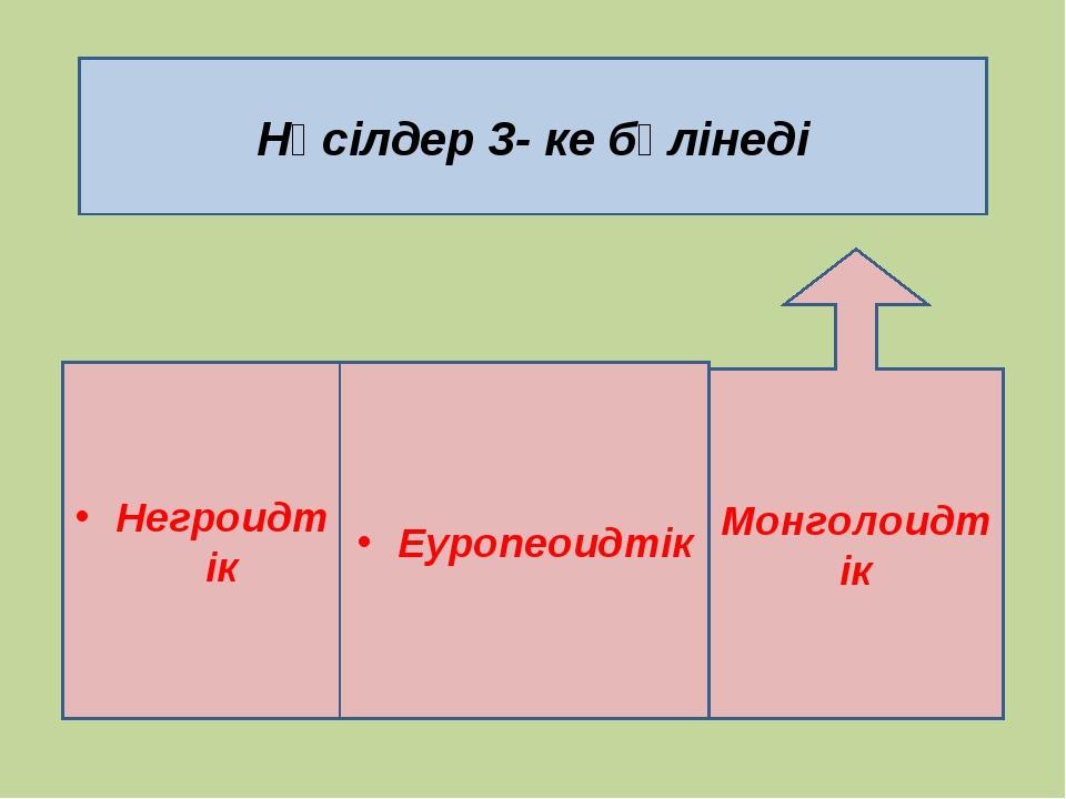 Нәсілдер 3- ке бөлінеді Негроидтік Еуропеоидтік Монголоидтік