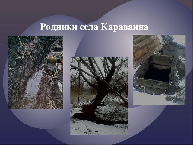 Родники села Караваина