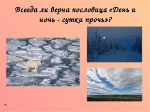 Всегда ли верна пословица «День и ночь - сутки прочь»?