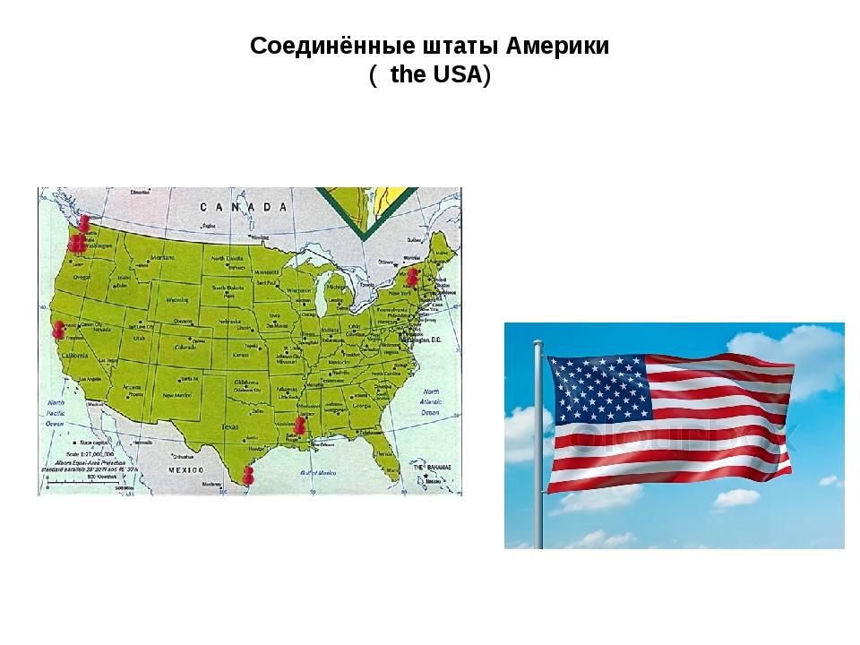 Соединённые штаты Америки ( the USA)