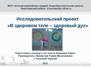 МОУ «Большечирклейская средняя общеобразовательная школа», Николаевский район