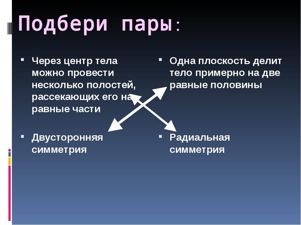 Подбери пары: Через центр тела можно провести несколько полостей, рассекающих...