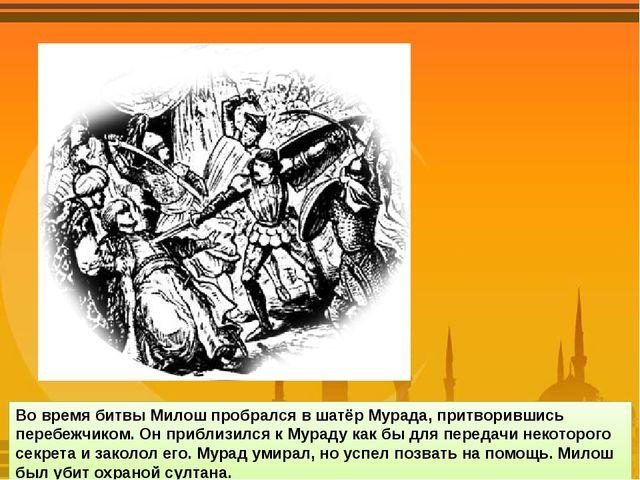 Во время битвы Милош пробрался в шатёр Мурада, притворившись перебежчиком. Он...