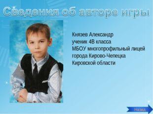 Князев Александр ученик 4В класса МБОУ многопрофильный лицей города Кирово-Че