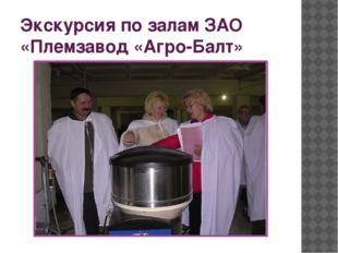 Экскурсия по залам ЗАО «Племзавод «Агро-Балт»