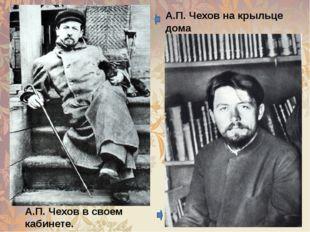 А.П.Чеховна крыльце дома с собакой Хиной. А.П.Чеховв своем кабинете. Мар