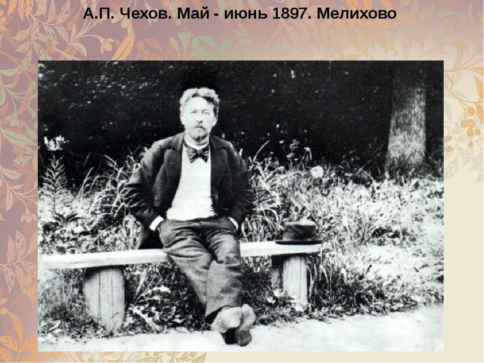 А.П. Чехов. Май - июнь 1897. Мелихово