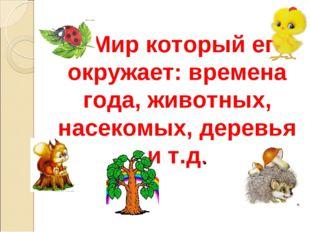 2. Мир который его окружает: времена года, животных, насекомых, деревья и т.д.